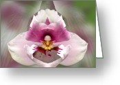 Photographic Art Greeting Cards - Guardian Greeting Card by Torie Tiffany