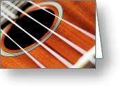 String Instrument Greeting Cards - Guitar Greeting Card by Lee Scott