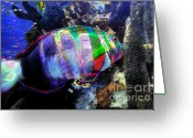 Sea Life Digital Art Greeting Cards - Gulf Waters Greeting Card by David Lee Thompson