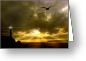 Sentinel Greeting Cards - Gull Flight Greeting Card by Robert Foster