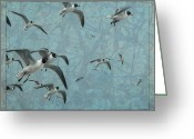 Beaches Drawings Greeting Cards - Gulls Greeting Card by James W Johnson