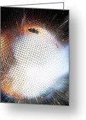 Explosives Greeting Cards - Gunpowder Explosion Greeting Card by Lawrence Lawry