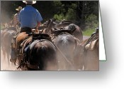 Quarter Horses Greeting Cards - Guts and a Horse Greeting Card by Sandy Rubini
