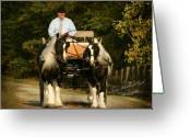 Carriage Team Greeting Cards - Gypsies Driving Greeting Card by Terry Kirkland Cook