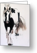 Shores Painting Greeting Cards - Gypsy Vanner Greeting Card by Abbie Shores