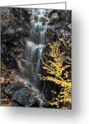 Desert Island Greeting Cards - Hadlock Brook Falls Greeting Card by Juergen Roth