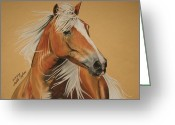 Melita Greeting Cards - Haflinger  Greeting Card by Melita Safran