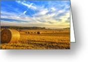 Most Photo Greeting Cards - Halcyon Harvest Days Greeting Card by Derek Beattie