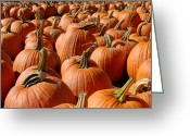 Straw Framed Prints Greeting Cards - Halloween 102 Greeting Card by Joyce StJames