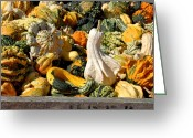 Autumn Photographs Greeting Cards - Halloween 104 Greeting Card by Joyce StJames