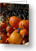 Straw Framed Prints Greeting Cards - Halloween 108 Greeting Card by Joyce StJames