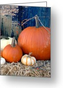 Autumn Photographs Greeting Cards - Halloween 110 Greeting Card by Joyce StJames