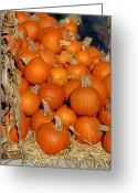 Fall Photographs Greeting Cards - Halloween 69 Greeting Card by Joyce StJames