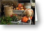 Autumn Photographs Greeting Cards - Halloween 81 Greeting Card by Joyce StJames