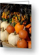 Straw Framed Prints Greeting Cards - Halloween 90 Greeting Card by Joyce StJames