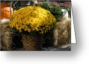 Autumn Photographs Greeting Cards - Halloween 91 Greeting Card by Joyce StJames