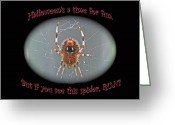 Marbled Orb Weaver Greeting Cards - Halloween Card - Marbled Orb Weaver Spider Greeting Card by Carol Senske