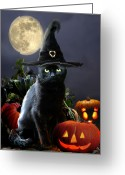 Black Cat Greeting Cards - Halloween kitty Greeting Card by Gina Femrite