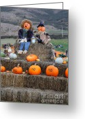 Scarecrow Greeting Cards - Halloween Pumpkin Patch 7D8476 Greeting Card by Wingsdomain Art and Photography