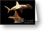 Still Life Sculpture Greeting Cards - Hammerquest Greeting Card by Kjell Vistnes