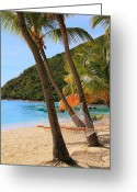 Van Dyke Greeting Cards - Hammock under the Palms Greeting Card by Roupen  Baker