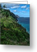 Island Photos Greeting Cards - Hanakapiai Beach Trail Greeting Card by Ken Smith