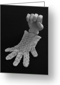 Clay Sculpture Greeting Cards - Hand and Glove Greeting Card by Barbara St Jean