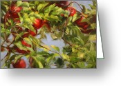 Linen Greeting Cards - Hangin Apples Greeting Card by Kathy Cooper