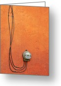 Cards Gallery Greeting Cards - Hanging In There Greeting Card by James Steele