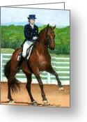 Bay Horse Greeting Card Greeting Cards - Hanovarian Dressage Horse Portrait Greeting Card by Olde Time  Mercantile