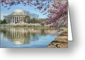 Blossoms Greeting Cards - Happiness Greeting Card by Mitch Cat