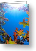 Black Greeting Cards - Happy Autumn Greeting Card by CML Brown