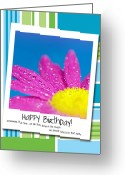 Birthday Card Greeting Cards - Happy Birthday Polaroid Greeting Card by Lisa Knechtel