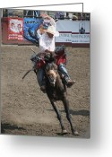 Bronc Greeting Cards - Happy Horse Bucking Greeting Card by Melisa Meyers