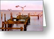 Fyn Greeting Cards - Happy Landings Greeting Card by Robert Lacy
