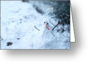 Snowy Night Greeting Cards - Happy Snow Man Greeting Card by Sun Wu