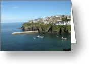 Cornwall Greeting Cards - Harbour In Port Isaac, Cornwall Greeting Card by Thepurpledoor