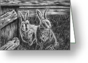 Hare Drawings Greeting Cards - Hare Line  Greeting Card by Peter Piatt