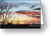 Autumn Photographs Greeting Cards - Harmony Greeting Card by Andrea Hazel Ihlefeld