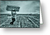 Fine_art Greeting Cards - Harvest - 2 Greeting Card by Okan YILMAZ