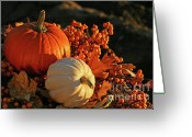 Outdoor Still Life Greeting Cards - Harvest colors Greeting Card by Sandra Cunningham