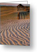 Sand Fences Photo Greeting Cards - Hatteras Dunes Greeting Card by Steven Ainsworth