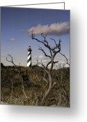 Fall Photographs Greeting Cards - Hatteras Lighhouse - NC Lighthouse Scene Greeting Card by Rob Travis