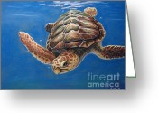 Sea Turtle Greeting Cards - Hatties Release Greeting Card by Deb LaFogg-Docherty