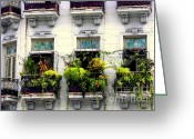 Gates Greeting Cards - Havana Windows Greeting Card by Karen Wiles