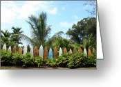 Tropical Island Photo Greeting Cards - Hawaii Surfboard Fence Greeting Card by Michael Ledray