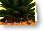 Hawaiian Food Greeting Cards - Hawaiian Pineapple Top Greeting Card by James Temple