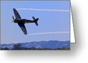 Airplanes Greeting Cards - Hawker Sea Fury Greeting Card by Garry Gay