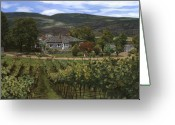 Vineyard Greeting Cards - Hawthorn vineyard in British Columbia-Canada Greeting Card by Guido Borelli
