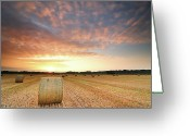 Rural Scene Greeting Cards - Hay Bale Field At Sunrise Greeting Card by Stu Meech